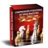 Comprensión posicional de Gran Maestro del GM Igor Smirnov